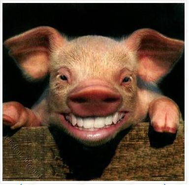 babi.jpg