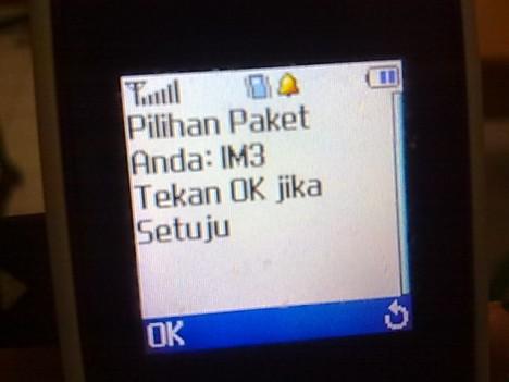 25062011058.jpg
