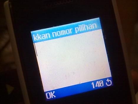 25062011062.jpg